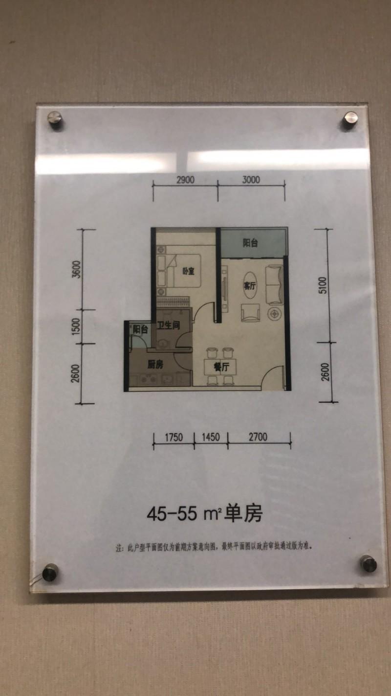 向南回迁房45-55平户型图