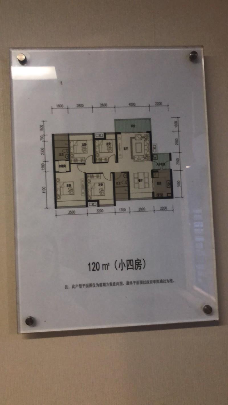 向南回迁房120平户型图