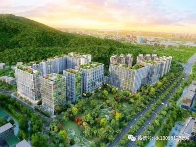 深圳恒大慧谷雅苑公寓要注册公司买吗?有没有7折优惠?